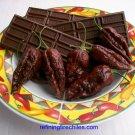 Rare Chocolate Bhut Jolokia 10+ Seeds