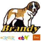 Custom Personalized Iron-on Patch - Saint Bernard