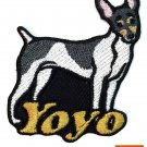 Custom Personalized Iron-on Patch - Toy Fox Terrier
