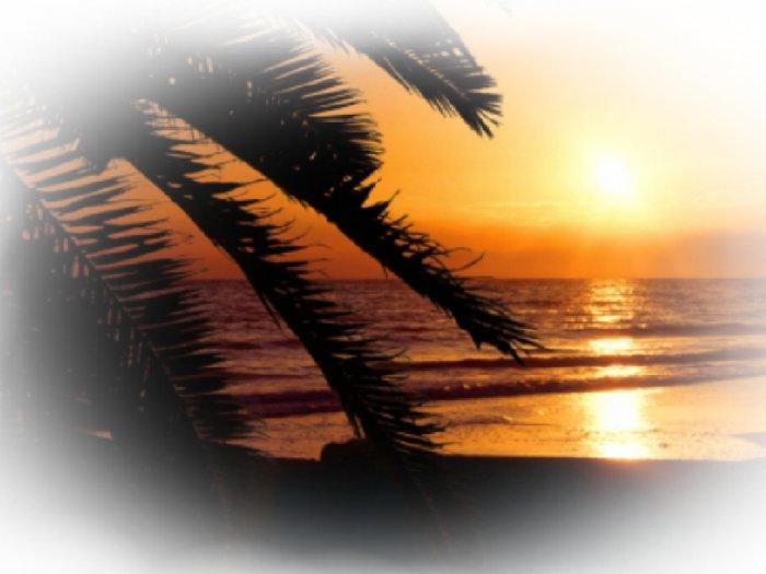 BEACH Sunset Scene Bathroom Shower Curtain beach #3