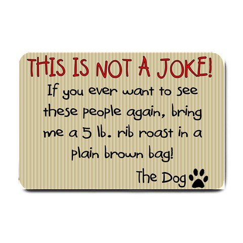 Humorous Funny Doormat, Mats Indoor Outdoor rugs #BSEC-CT