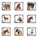 Horses Italian Charms Starter Bracelet Set of 9 pack MEGA Size 18mm 26865672