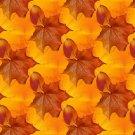 Fall Leaves Design Indoor Room Doormat Mat Rug in Hallway, Bedroom, Dorm, Cabin