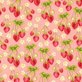 Michael Miller - Medow Sweet - Strawberry Fields - Pattern #: SH4239_Pink - 1 Yard