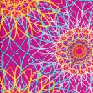 Free Spirit - Melissa Averinos - Sugar Snaps Lace Plum