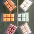SOY TART MELTS in 6 Block Clamshell - SET OF 2