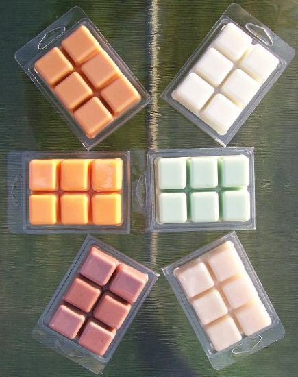 TART MELTS in 6 Block Clamshell - SET OF 2