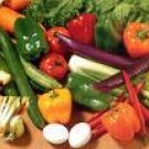 Home Vegetable Gardening Grow Your Own eBook on CD