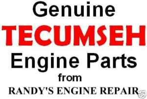 OEM Tecumseh 631719 Repair Rebuild Overhaul Carburetor