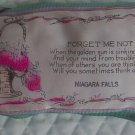 Vintage Souvenir Forget Me Not Niagara Falls`Pillow