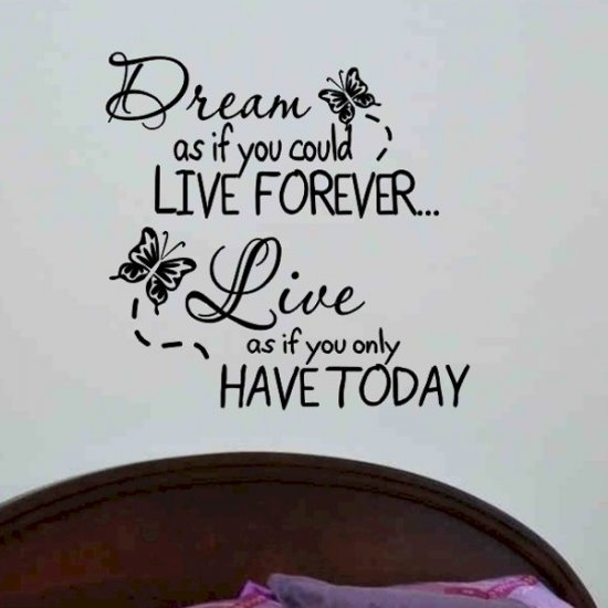 wall quote decal Dream as if you could live forever