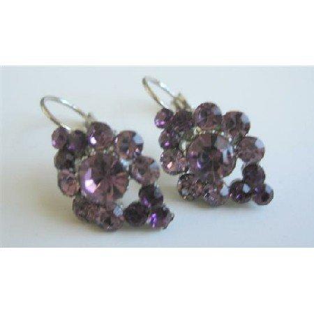 ERC455  Vintage Elegant Amethyst Crystals Earrings
