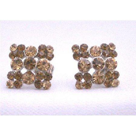 ERC467  Smoked Topaz Crystals Light & Dark Earrings