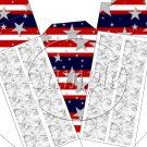 Stars & Stripes Patriotic Cake ~ Cake Slice Box