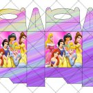 Princesses Faux or Inspired by Disney ~ Gable Gift or Snack Box