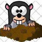 Mole  ~  Cupcake Pick & Toppers ~ Set of 1 Dozen