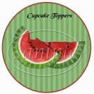 Summer Time Watermelon  ~  Cupcake Pick & Toppers ~ Set of 1 Dozen