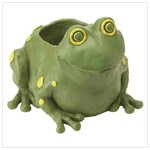 NEW!! FROG CONTAINER