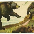 1950's Vintage Trading Swap Playing Cards Blank Back BLACK BEAR with CUBS