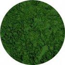 Tree Hugger Loose Mineral Eye Pigment (5.5 grams)