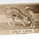 "Vintage Postcard  ""Calf Love"" Little Child With Calf"