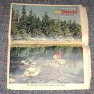 May 15 1966 Seattle Times Pictorial Magazine Dr Otto Larsen -Outdoors