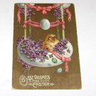"Vintage Postcard ""Best Wishes Easter"" Chick in an Egg Nested with Flowers"