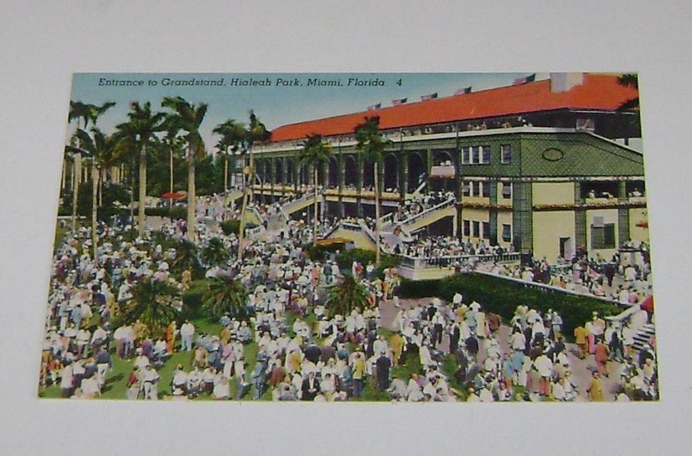 Vintage Postcard Grandstand Hialeah Park Miami Florida