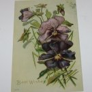 Vintage Postcard Best Wishes Purple Flowers PM'd 1908