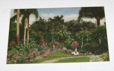 Vintage Postcard Tropical Flowers Sunken Gardens St Petersburg Florida