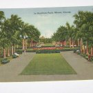 Vintage Postcard In Bayfront Park Miami Florida rows of trees & benches