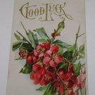 "Vintage Postcard ""Good Luck"" Red Flowers"