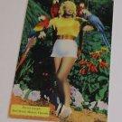 Vintage Postcard Parrot Jungle Red Road Miami Blonde Girl w/ Parrots