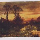 Vintage Postcard After the Storm 5613 Horse sheep Landscape