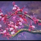 Gorgeous Oil Floral Painting on Canvas Asian Art (+Frame) FL3-029