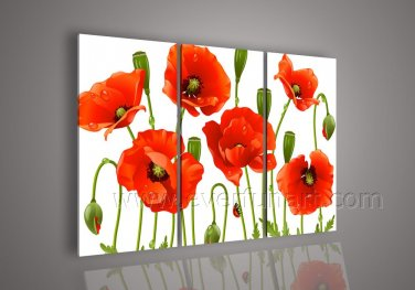 New!!!Beautiful Flowers On Canvas Wall Art Home Decoration FL3-139