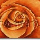 hand-painted rose painting wall decoration oil painting (framed) FL3-214