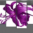 Low Price! High Quality! Modern Professional Flower Canvas Art Oil Painting for Decor FL4-102