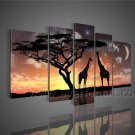 Modern Canvas Wall Art African Oil Painting (+ Framed) AR-097
