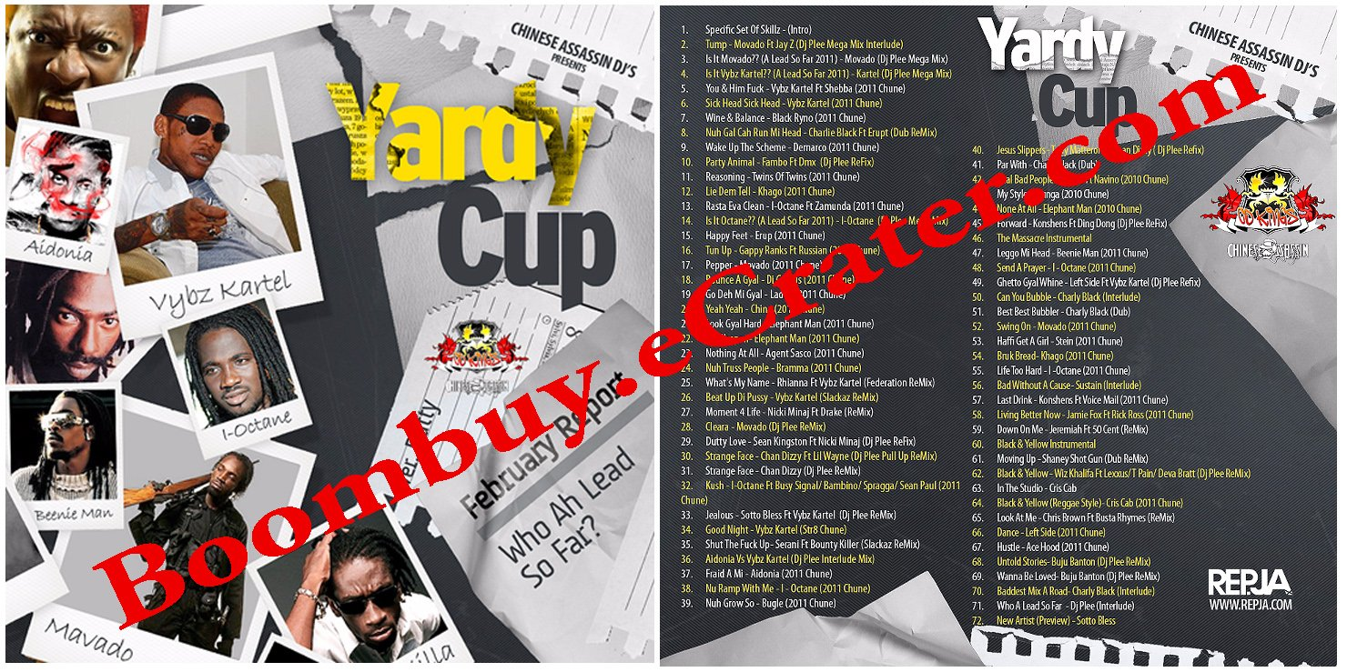 Chinese Assassin: Yardie Cup 3 ( 2011 Febuary Report )