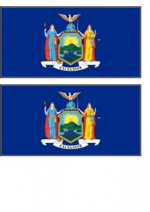 2 New York State Flag Stickers Decals Sticks to Almost Anything