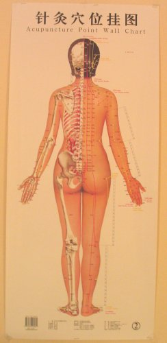 3 Female Acupuncture Meridian Points Wall Charts
