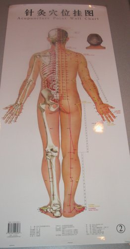 3 Male Acupuncture Meridian Points Wall Charts