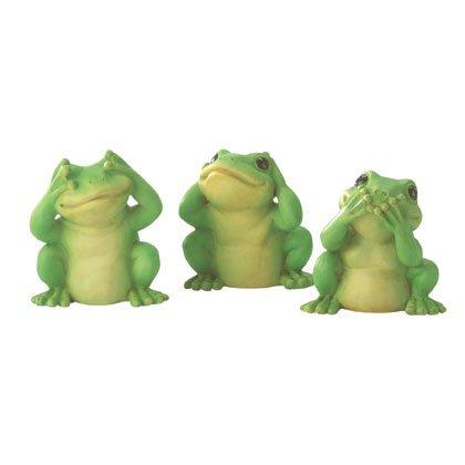 35011 Hear, See, Speak Frogs