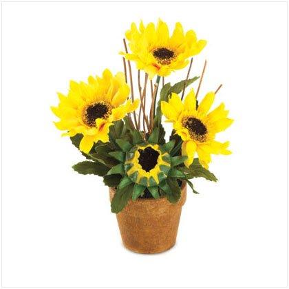 36232 Sunflower Bouquet