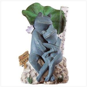 33911 Frog Rain Gauge