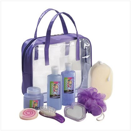36387 Wild Berry Set In Purple Tote