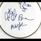 PHISH  signed AUTOGRAPHED full size DRUMHEAD