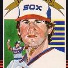 1985 Donruss #3 Richard Dotson DK