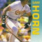 1992 Fleer #10 Sam Horn